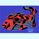 ルアー風の黒鯛真鯛