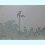 わたしの筆「止まる鳥20121111」
