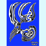 羽と胸WBDS