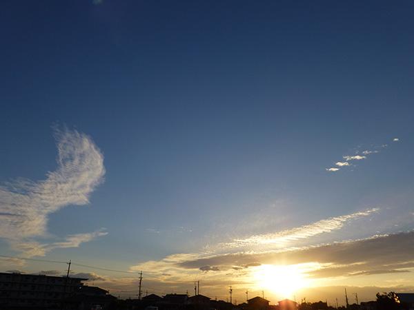 散歩道20121004
